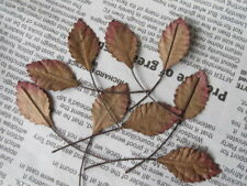 50 Rose Leaves Autumn Brown 14mm width Wire Stem Mulberry Paper Craft R3B