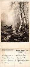 1920's DAWN IN THE FOREST FEATURING DEER UNUSED POSTCARD