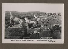 Delos LIONS  Mykonos. RP Photograph.  Vintage Postcard.     L.402