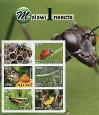 Malawi 2018 MNH Insects Ladybirds Butterflies Bees Beetles 6v M/S Stamps