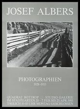 Josef Albers Paznauntal Poster Bild Kunstdruck mit Alu Rahmen in schwarz 59x84cm