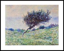 Claude Monet Seeküste in Trouville Poster Kunstdruck mit Alu Rahmen 56x71cm