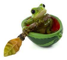Fairy Garden Mini - Mini Frog Rowing Watermelon Boat