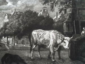 COW Roaming a River Quay at Amsterdam Holland  - 1876 Original Etching Print