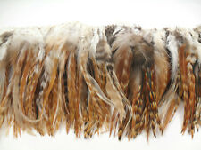 "50+ GINGER MIX TAPERED GRIZZLY CHINCHILLA SADDLE HAIR CRAFT FEATHER 5""-7""L"