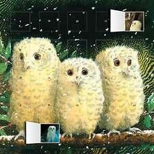 Owl Bebés Animales mes calendario de adviento para ver