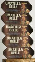 VTG Original Florida 1930's-40's Umatilla Belle Indian Fruit Crate Label Lot NOS