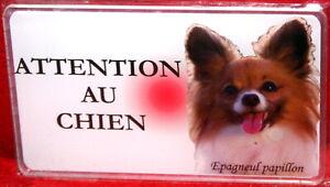 Epagneul Papillon Plaque ATTENTION AU CHIEN Panneau Avertissement Pancarte P2