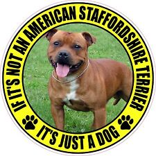 Not American Staffordshire Terrier Just A Dog Sticker