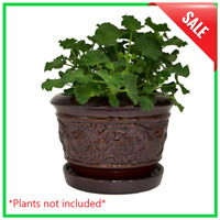 "8"" Ceramic Flower Pots Garden Plants Planter With Drainage Holes & Saucer Rustic"