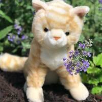 Taffy Striped Orange Kitten Plush Stuffed Animal Cat