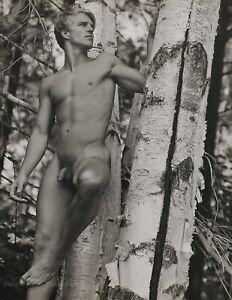 1989 Vintage BRUCE WEBER Outdoor Male Nude Birch Tree Adirondack Photo Art 12X16