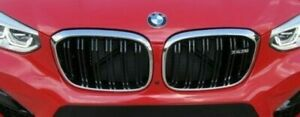 BMW OEM 2019+ G02 F98 X4 M Front Grille Pair Brand New