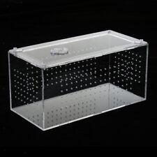 Reptile Terrarium Habitat Feeding Box Container for Spides Geckos Cricket