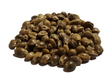 Seeds of hemp Bio 2.2lbs TERRALBA to make germinate enzymes seed sprout
