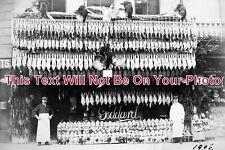 SX 401 - Butchers Shopfront, Bohemia Road, Hastings, Sussex c1906 - 6x4 Photo
