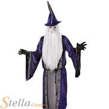 Hommes Violet Costume Magicien Gandalf Dumbledore Déguisement Halloween Adulte