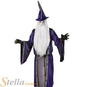 Mens Purple Wizard Costume Gandalf Dumbledore Halloween Fancy Dress Adult Outfit
