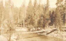 RPPC San Joaquin River Bridge MONO HOT SPRINGS Mudge Photo 1929 Vintage Postcard