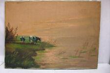 Lucass C.? Cows at Sundowner Kühe beim Sonnenuntergang -gleißend u. pastos !!