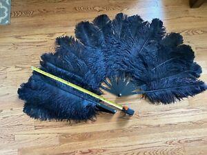 """Burlesque BLACK ostrich feather fans LARGE set of 2 (30"""" x 50"""")"""