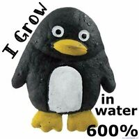 Growing Penguin  ** Just add water **  fun grow play novelty toy for children