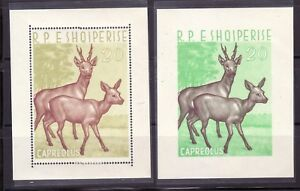 ALBANIA Sc 643 NH PERF & IMPERF SOUVENIR SHEETS OF 1962 - ANIMALS - DEERS