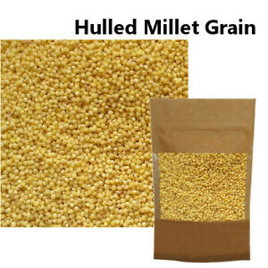 Millet Groat Hulled Grain (No Husk) Organically Grown 100g 250g 500g 1kg Cooking