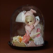 Dollmore Acrylic Dome Case + Base ( Black)