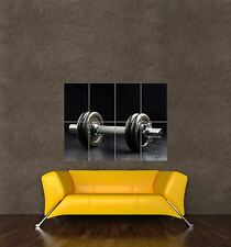 POSTER PRINT GIANT SPORT PHOTO EQUIPMENT EXERCISE WEIGHT DUMBELL FITNESS PAMP258