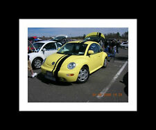 "All Year Volkswagen Beetle 8"" OFFSET Rally stripes Graphics Stripe Decal"