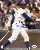 Ernie Banks Psa Dna Coa Autograph 8x10 Photo  Hand Signed Authentic