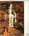 06 - cpsm - Les grottes de Saint Cézaire - Le squelette et les orgues ( i 5329)