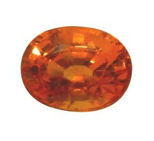 Natural Golden Orange Sapphire VS Clean Stone 1.38ct Approx. 7 x 5.5 x 4.2mm