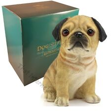 Dog Studies Puppy Love Pug Black / Fawn Resin Collectable Ornament Gift Boxed