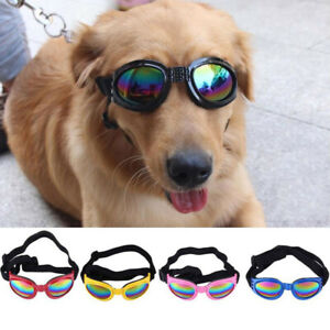 Small Fashion Pet Sunglasses For Special Tidal Glasses For Cats Small Dogs FW