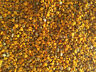 Bee pollen fresh natural Organic granules, Season 2019