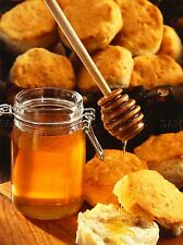 MODERN PHOTOGRAPHY BREAD HONEY JAR FOOD LARGE POSTER ART PRINT BB3121A