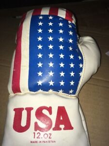 Jake LaMotta The Raging Bull Autographed Vintage USA Flag Boxing Glove