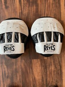 Clete Reyes Curved Boxing Punch Mitts