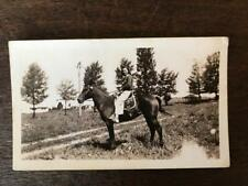 Vintage Photo Young Woman on Horse at Family Farm in field B&W