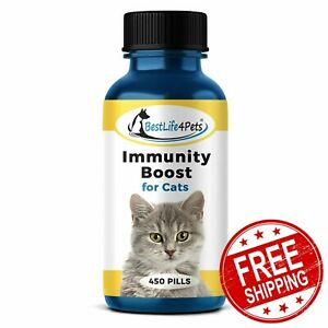 IMMUNITY BOOST FOR CATS 450 Pills Immune System Support Natural Supplement