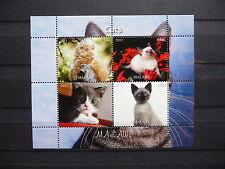 Katzen 13 1 cats Chats Tiere animals pets Fauna Block KB sheet postfrisch ** MNH