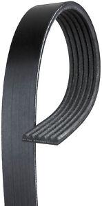 Serpentine Belt-Micro-V AT Premium OE V-Ribbed Belt CARQUEST by GATES K060420