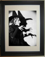 Wizard of Oz Wicked Witch  Framed Photo Picture