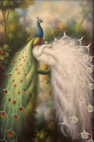 Beautiful oil painting nice birds Peacocks on branch in landscape free postage
