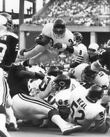 1981 Chicago Bears WALTER PAYTON Glossy 8x10 Glossy Photo NFL Football Print