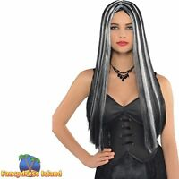 Black & Silver Long Witch Wig Halloween Adult Womens Fancy Dress Costume