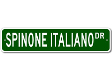 Spinone Italiano Street Sign ~ High Quality Aluminum ~