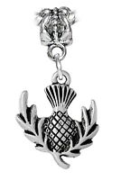 Pineapple Scotland Thistle Flower Dangle Charm for Silver European Bead Bracelet